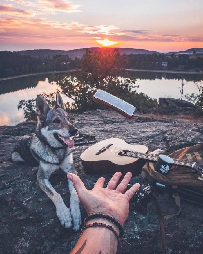 Regardez ces superbes photos d'un mec qui emmène son chien partout dans le monde